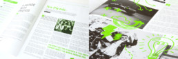 Smoke Signals Publication Design and Layout