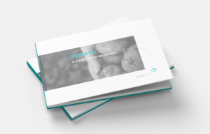 Brochure and Promo Pack Layout and Branding Design