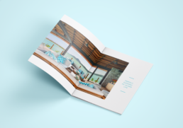 Pangia Brochure Design